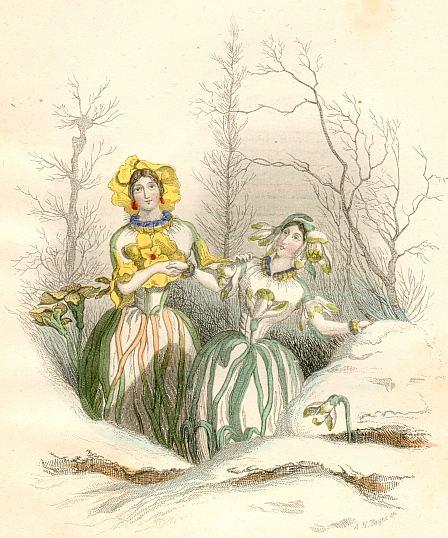 Blumengeister schneeglöckchen und himmelsschlüsselchen